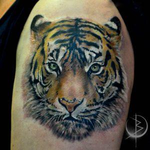 Татуировка тигра, в реализме на плече