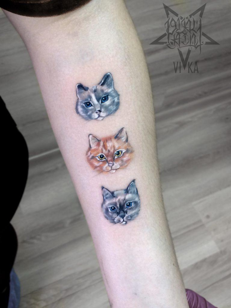 Котики на руке, цветное небольшое тату