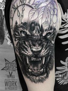 Тигр на плече, мужская татуировка в процессе