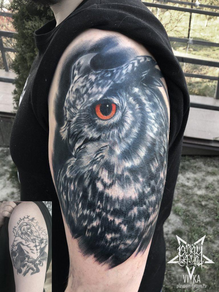 Перекрытие старой татуировки, сова в реализме на плече