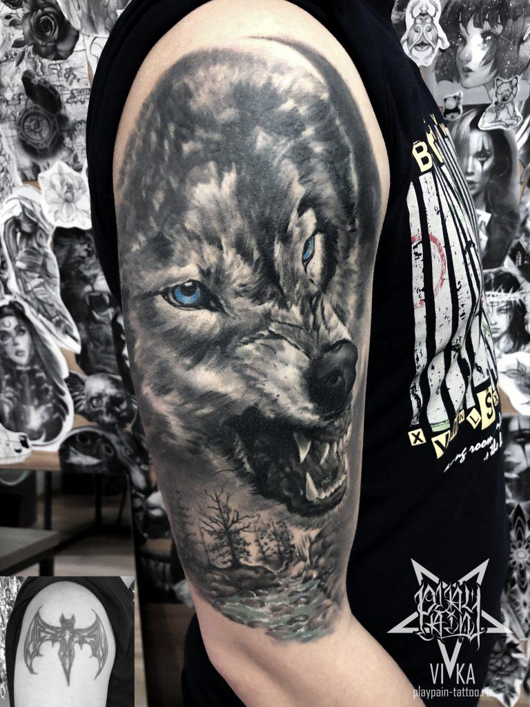 Волк тату на плече, перекрытие старой татуировки